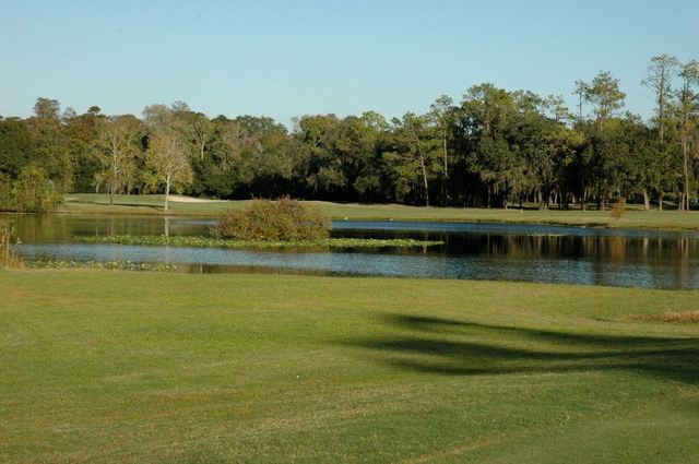 Claw golf course - University of South Florida - hole 6