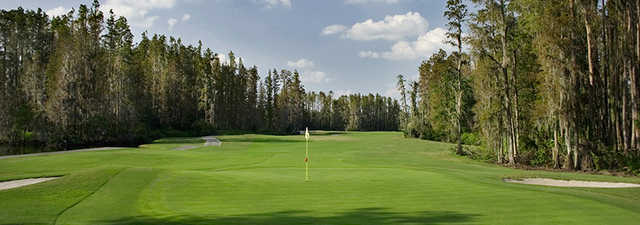 Saddlebrook at Saddlebrook Golf & Tennis Resort: #4