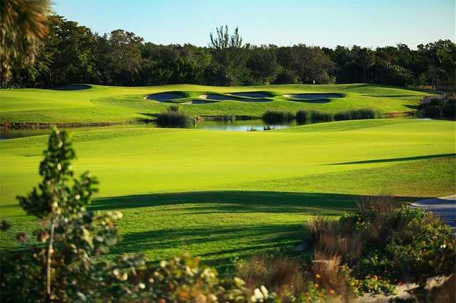 Hammock Bay Golf Course In Naples