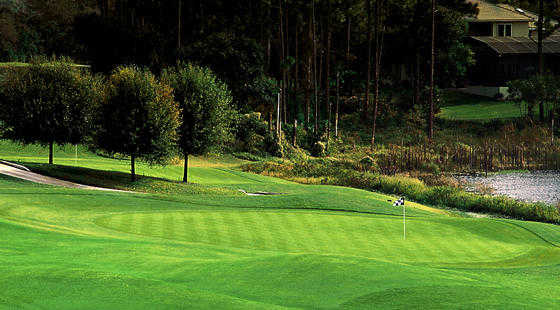 A View Of Green At Debary Golf Country Club