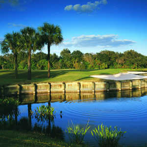 Plantation GCC - The Panther: #15