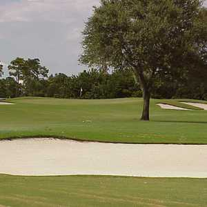 Panther at Plantation GCC: #4