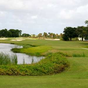 Davie GCC: #1