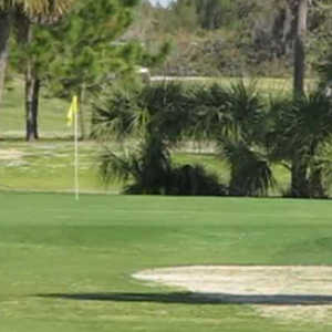 Tarpon Springs GC