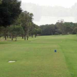 Citrus Springs GCC