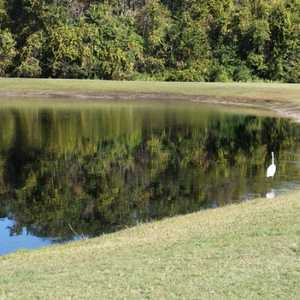 Silver Dollar Golf & Trap Club