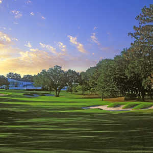 Ocala National at Golden Hills