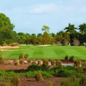 Gold Course at Tiburon: #11
