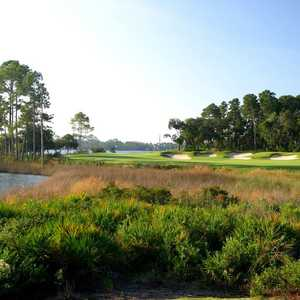 Sharks Tooth GC: #6