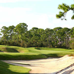Loblolly Pines GC