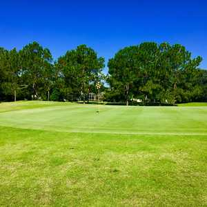The CC of Mount Dora: #14