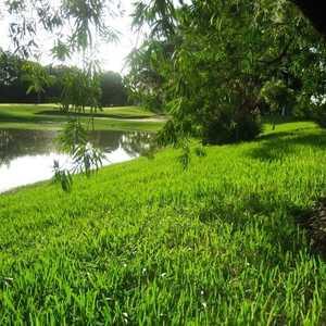 Timber Greens CC