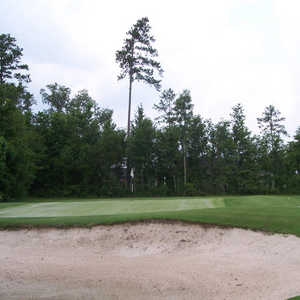 Hernando Oaks G &amp; CC: practice bunker
