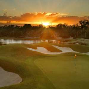 Old Orange at Verandah: #18