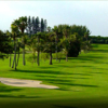 A view of a fairway at Palm Beach Country Club