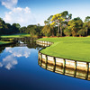 A view of the 3rd green at North Course from Innisbrook Resort & Golf Club.