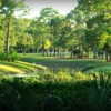 View from a tee at Palmetto-Pine Country Club