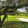 A sunny day view of a green at Misty Creek Country Club