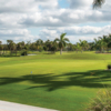 A view of a green at Naples Beach Hotel & Golf Club