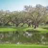 A view from Silverado Golf & Country Club