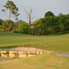 View of a green at Indianwood Golf & Country Club