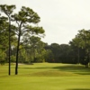 A view from Palmetto-Pine Country Club
