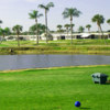 A view from a tee at Six Lakes Country Club.