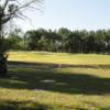 A view of a green at Black Diamond Ranch Golf & Country Club.