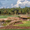 View of the 11th hole from the Black Course at Tiburón Golf Club