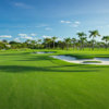 A sunny day view from La Gorce Country Club.