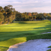A view of the 14th hole at Palm Harbor Golf Club.