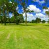 A view from Zephyrhills City Golf Course