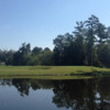 View of a green at Hernando Oaks Golf & Country Club