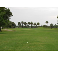 A line of palm trees at Jacksonville Beach Golf Club gives you a target for the seventh green.