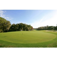 After six flat holes, the seventh hole on the Island Course at Innisbrook begins a stretch of rolling hills.