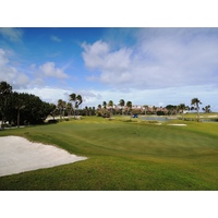 The third hole at Palm Beach Par 3 Golf Course is just 126 yards long, but hardly easy.