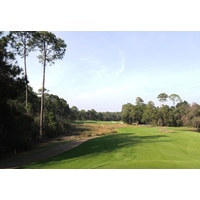 Rees Jones puts in plenty of challenge off the tee on the long par-4 fourth at Sandestin resort's Burnt Pine Golf Club.